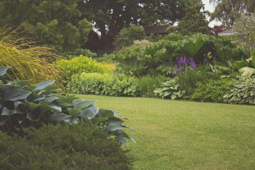 Van Stippent Bouwservice - tuin en terras